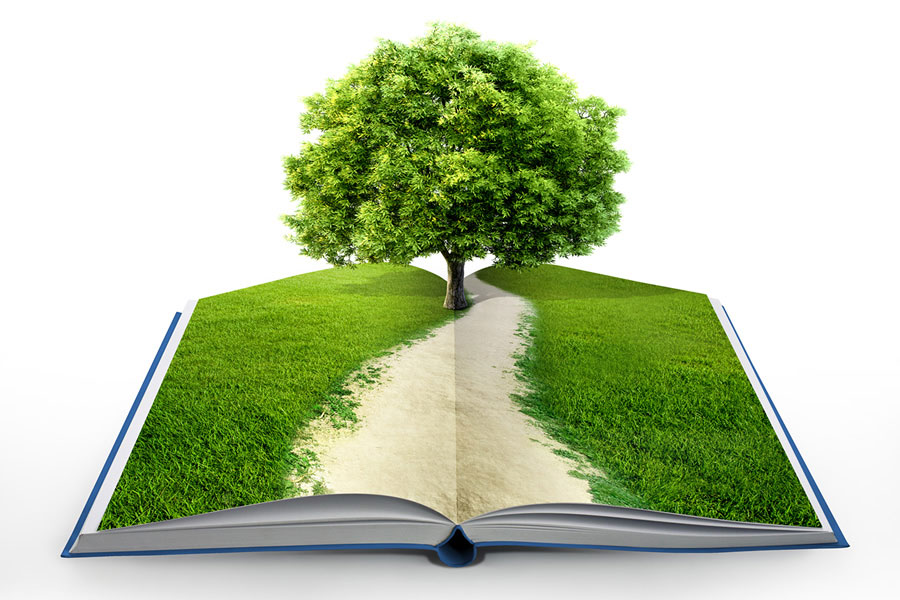Environmental Audits Services in Ghana